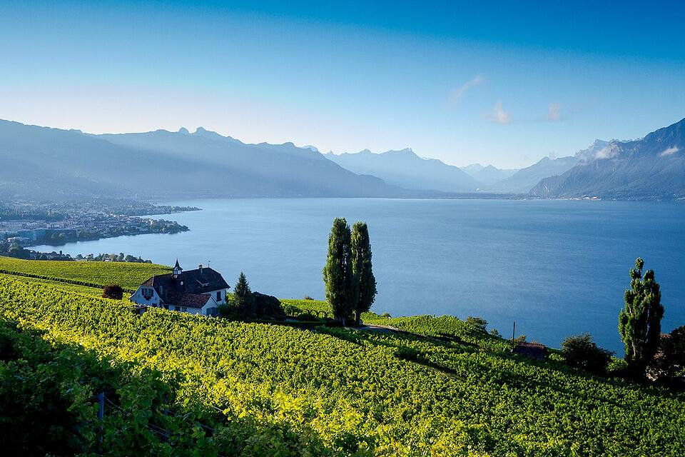 Lavaux-switzerland-compressor