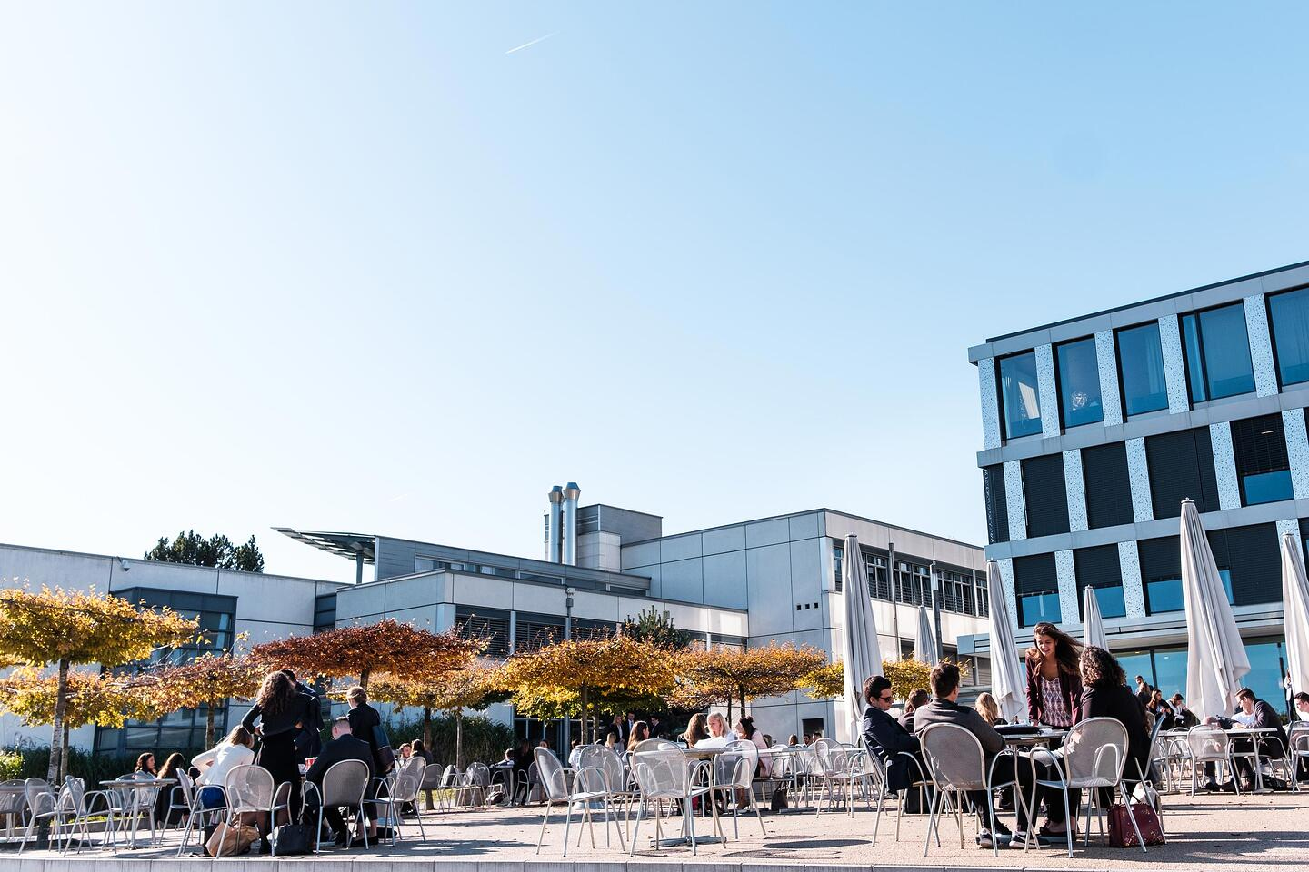 our_campus_terrasse